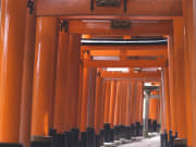 Fushimi-Inari-taisha_Shrine