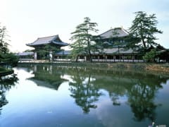 Todaiji Temple and the Great Buddha Hall