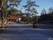 Serene temple grounds in Nara