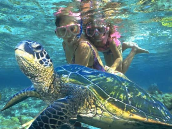Escape Waikiki For A Fun Filled Day Of Snorkeling Swimming And Boogie Boarding At Oahu S Kailua Beach Voted The Best In Hawaii