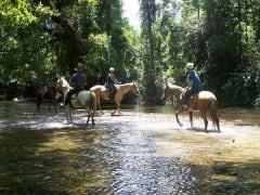 cairns horseback riding