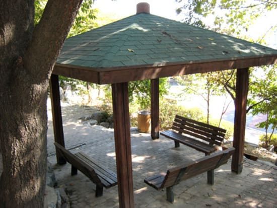 【1%の奇跡】ダダの家の近くの公園ベンチ