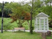 【オレのこと好きでしょ】ベンチがあった学校の裏庭