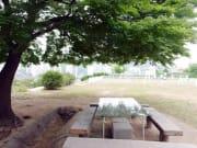 【屋根裏】イ・ガクとパク・ハが、木の下のベンチで語り合った丘