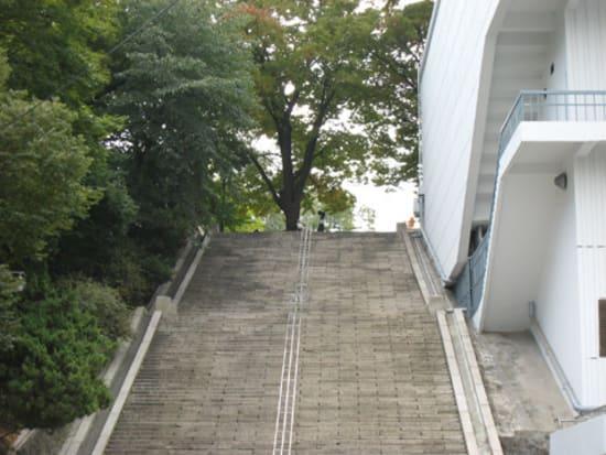 【私の名前】南山のサムスンとサムシクのキスの階段