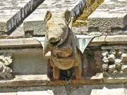 4 Melrose Abbey - pig playing bagpipes
