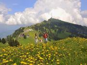 Mt Rigi, Rigi Kulm, swiss alps, hiking