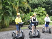 Segway-Botanical-World-webres02