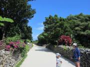 竹富島画像