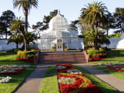 conservatory of flowers