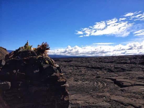 溶岩 マウナロア山 6.27.13