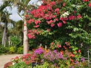 由布島植物園