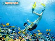 Marine Walk Bali
