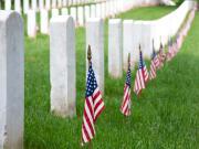 Gray Line Arlington Tombstones
