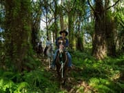 Horseback riding tour in the middle of the forest