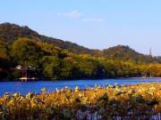 秋の西湖 (2)