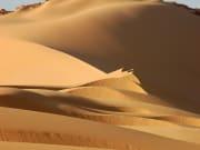 DESERT (21) (1)