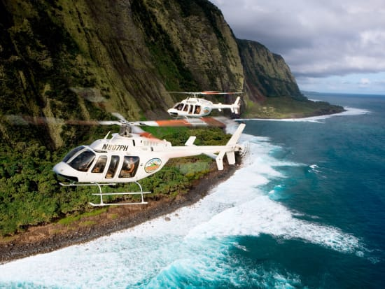 2 helicopters with beach background