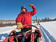 ara_dogsledding_20090303110303