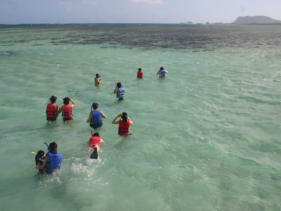 sandbar&snorkel  (4)