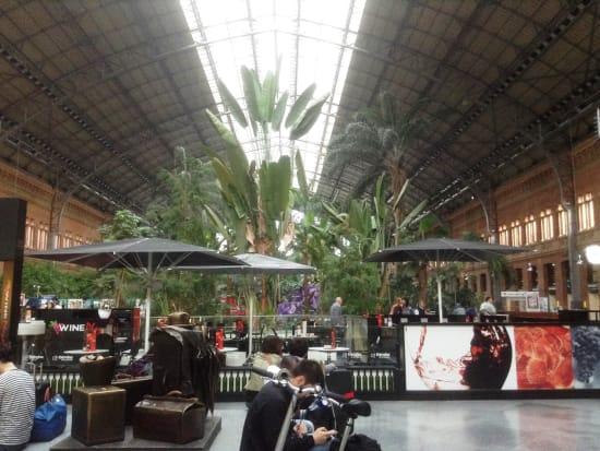 ATOCHA駅構内 植物園の全体