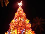 Honolulu_Christmas06