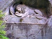 Lion Lucerne