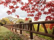 20131215183037_104427_大阪城公園