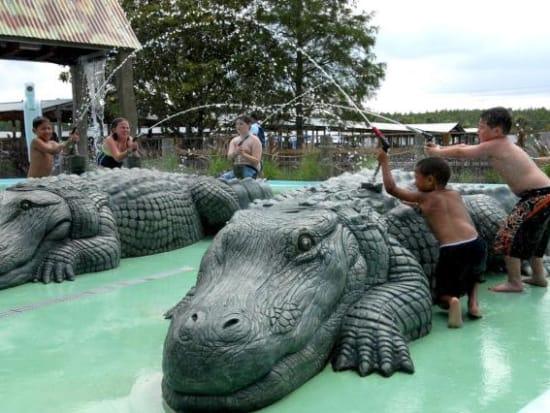 gator01