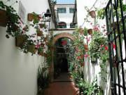 サンタ・クルス街