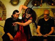 Flamenco-baja-calidad