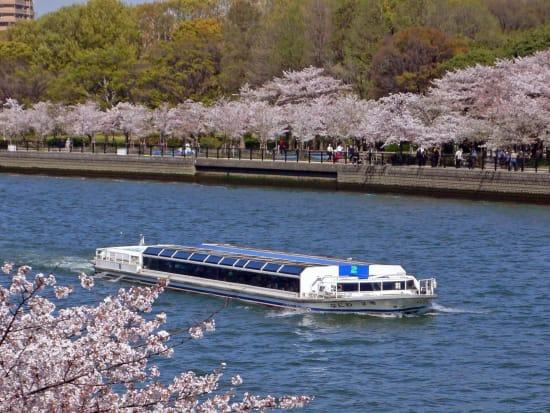 ④アクアライナー桜B