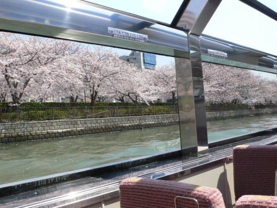 ⑯なにわ船内より桜風景