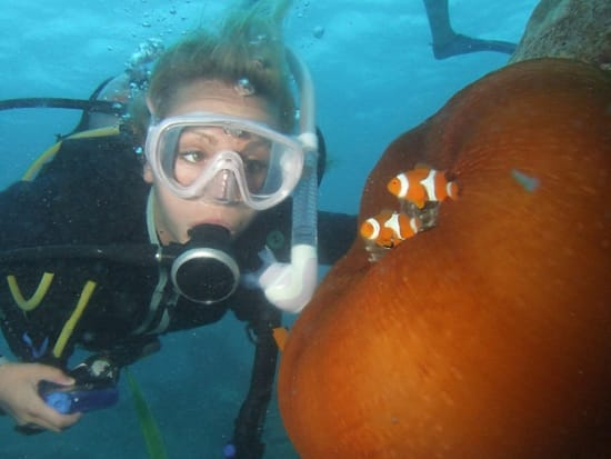 Reef Cruise (7)