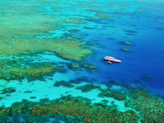 Reef Cruise (8)