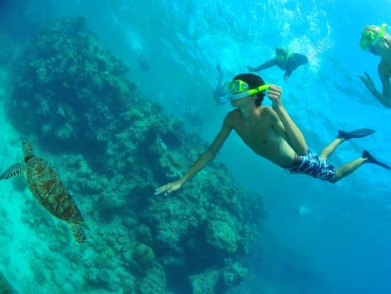 Reef Cruise (4)
