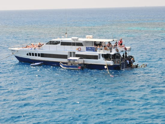 Reef Cruise (9)