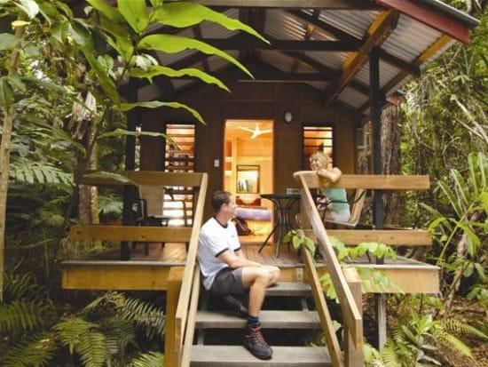 Rainforest Tour (17)