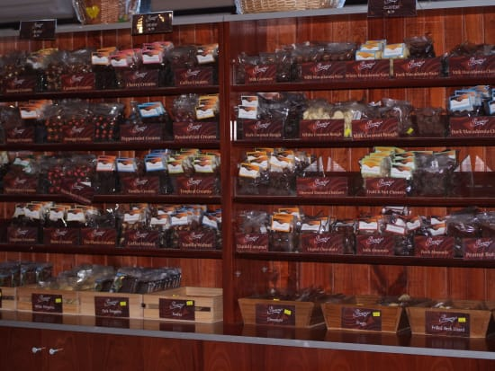 Pannys World of Chocolate (376, 366, 366S)
