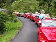 red vw safari jeeps in bali indonesia tour