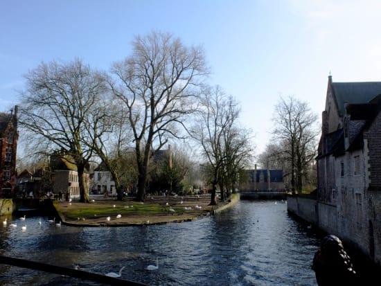 美しいブルージュの運河