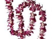 Lei Greeting for Two