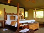 マサイマラ国立保護区関連