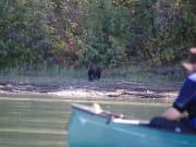 canoe3