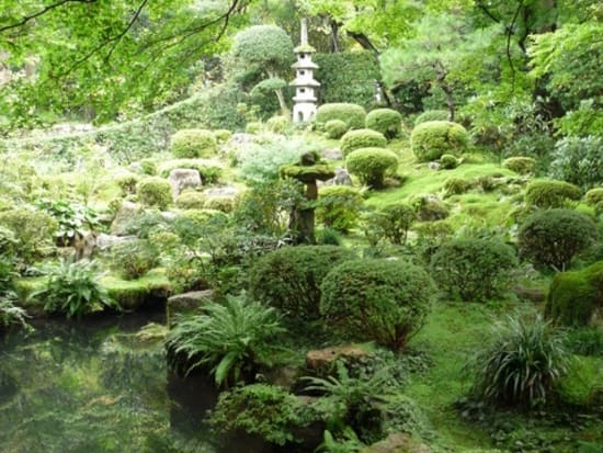 三千院_庭園