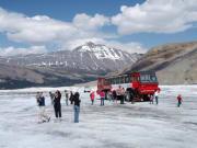アサバスカ氷河雪上車