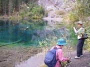 grassy-lake