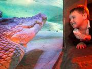 Child&Croc