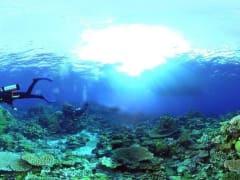 20140515234536_174601_underwater_pan
