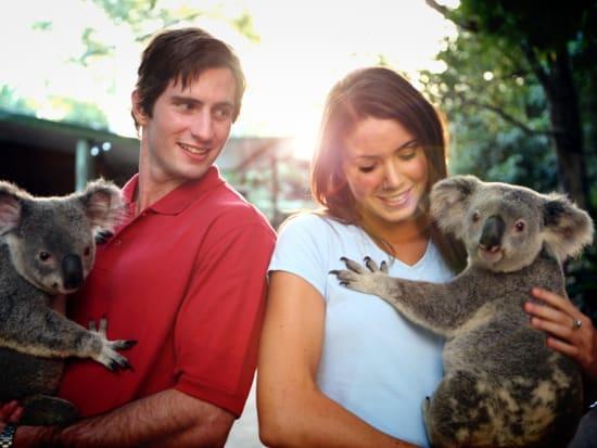 Brisbane Highlights - Lone Pine Kolala Sanctuary